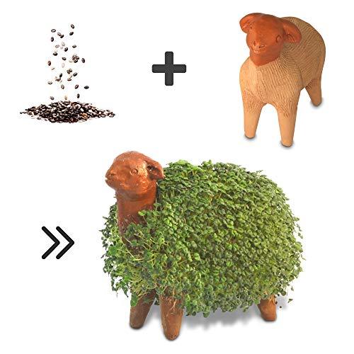 Growing Fiesta Anzuchtset Schaf für Chia-Samen, Kresse, Keimsprossen (handgemachte Tonfigur, getöpfert, gebrannt) 14310