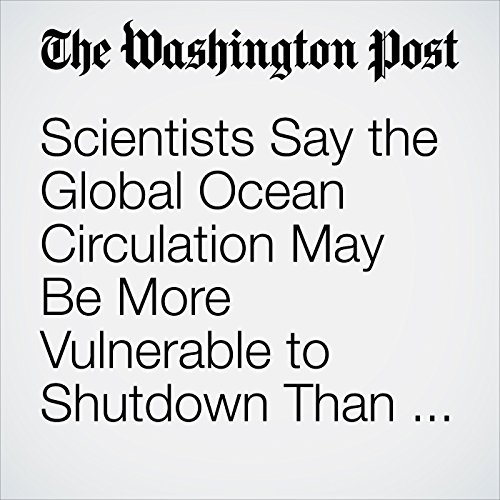 Scientists Say the Global Ocean Circulation May Be More Vulnerable to Shutdown Than We Thought copertina