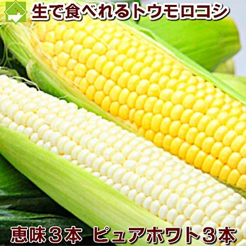 とうもろこし 生で食べれるトウモロコシ 恵味3本・ピュアホワイト3本 2種類セット