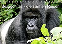 Berggorillas - die sanften Riesen (Tischkalender 2022 DIN A5 quer): Berggorillas in ihrem Lebensraum (Monatskalender, 14 Seiten )