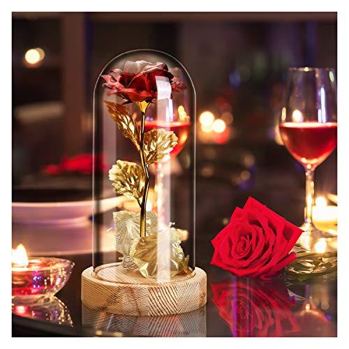 qerich Die Schöne und das Biest Rose Geschenk Kit,Rose im Glas,Rosen Holzsockel LED-Licht für Hauptdekor Geburtstag, Hochzeit, Valentinstag, Muttertag, Jubiläum, Weihnachtstag