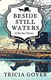 Beside Still Waters: A Big Sky Novel (English Edition)