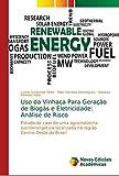 Uso da Vinhaça Para Geração de Biogás e Eletricidade: Análise de Risco: Estudo de caso de uma agroindústria sucroenergética localizada na região Centro Oeste do Brasil
