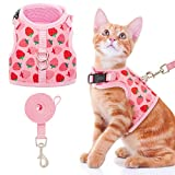 Best Harnesses For Cats - BINGPET Cat Harness and Leash Set - Escape Review