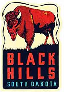 Black Hills South Dakota Buffalo