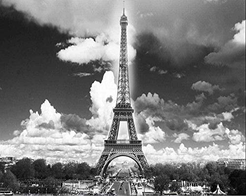 France Paris Eiffel Tower Photo Mural Hd Wallpaper Wall Art Decor 3D Photo Wallpaper Paper Peint Pour Les MURS 3 D Black and White-420X260CM