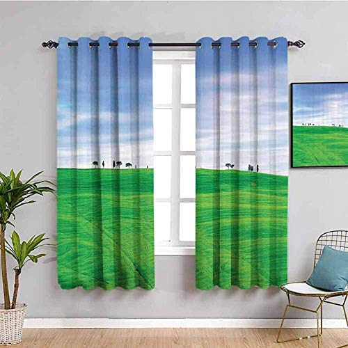Nileco Blickdicht Vorhang Wärmeisolierender - Grün Gras Himmel Landschaft - 264x210 cm - Junge mit Mädchen Schlafzimmer Wohnzimmer Kinderzimmer - 3D Digitaldruck mit Ösen Thermo Vorhang