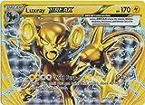 Pokemon - Luxray-Break (47/122) - XY Breakpoint - Holo