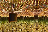 シュルレアリスム草間彌生インフィニティミラー抽象芸術ポスターキャンバスウォールアートプリント写真リビングルームの装飾のためのウォールアート-50X70Cmフレームレス