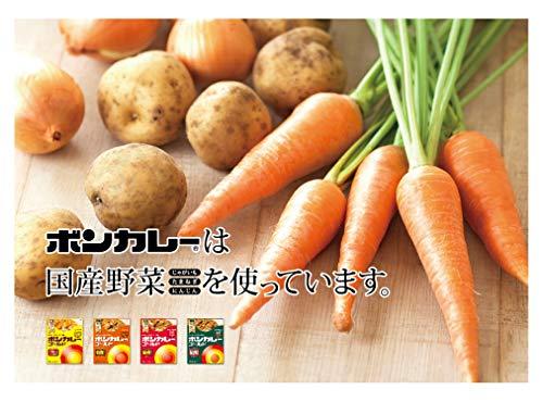 大塚食品ボンカレーゴールド【中辛】180g×5個