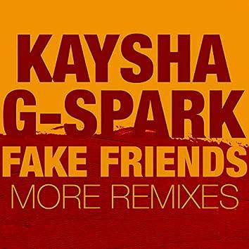Fake Friends (More Remixes)