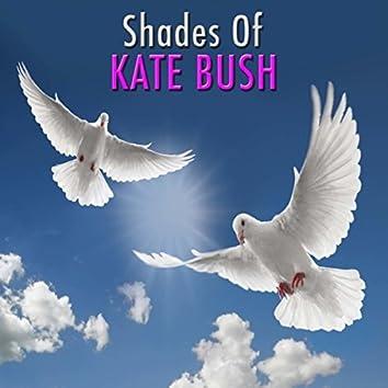 Shades Of Kate Bush