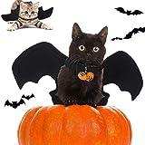 QIMMU Costume de Chat de Chauve-Souris Halloween, Costume pour Chat,Costumes...