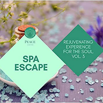 Spa Escape - Rejuvenating Experience For The Soul, Vol. 3