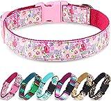 Taglory Collar Perro Ajustable,Estilo Único Collar Adiestramiento para Perros Extra Pequeño,20-30cm Flor Rosa