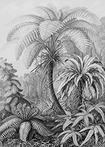 IXXI Wanddekoration (Cards 10 x10 cm) Ferns - L - 120 x 160 cm Wall Decoration, großes Wandbild, Mosaikbild, Poster, Mosaik, Wanddeko, Collage, Wandbehang, Home Wanddeko, Wandbilder