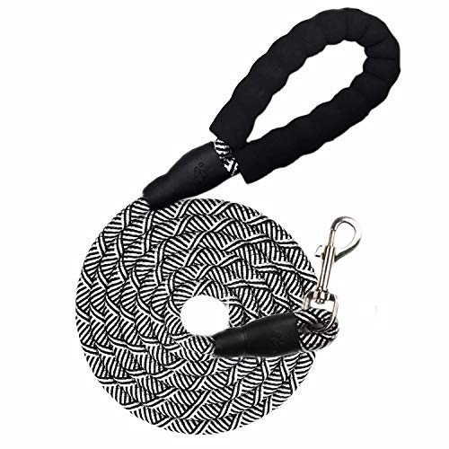10 FT Heavy Duty Rope Dog Leash with Comfortable Durable Soft Padded Handle, Slip Long Dog Leash, Strong Highly Reflective Nylon Dog Leash for Large, Medium, Small Dogs Walking Training Hiking