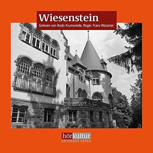 Wiesenstein Titelbild