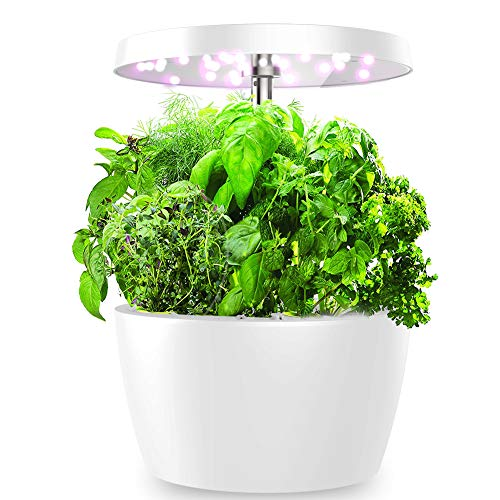 Hydroponics Growing System, Indoor Herb Garden Simple to Use, Smart Planter with Timed Auto On/Off, Easy for Home Kitchen Office Planting, 4 Pods, White