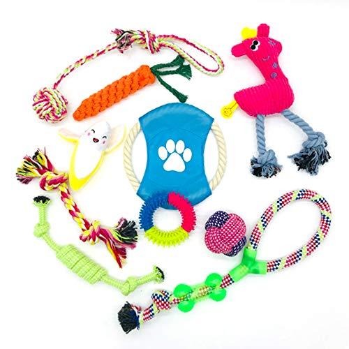 Trongle Hundespielzeug für Welpen, aus Baumwolle, Kauspielzeug für Welpen, Seilspielzeug mit Frisbee und geflochtenem Seil für kleine oder mittelgroße Hunde, Zahnreinigung (10 Stück)