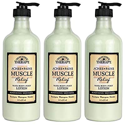 Village Naturals Therapy, Lotion, Aches and Pains Muscle Relief, 16 fl oz, Pack of 3
