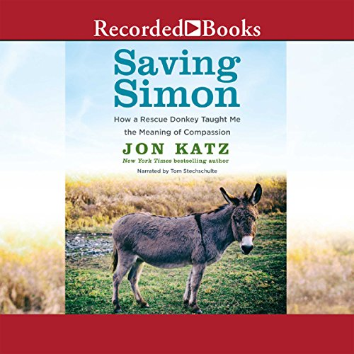 Saving Simon audiobook cover art