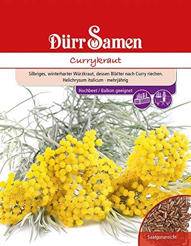 Dürr Samen 4518 Currykraut (Currykrautsamen)