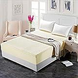 NTtie Funda de colchón Anti chinches, Transpirable, Colcha de una Pieza de algodón Grueso para Hotel