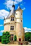 FAWFAW Puzzle 1000 Piezas, Chateau De Chenonceau En Loire Francia