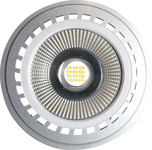 Silver Electronics ampoules 5000 K GU10, 12 W, Argent