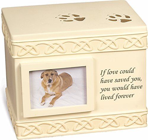 if love could have saved you urn - 2