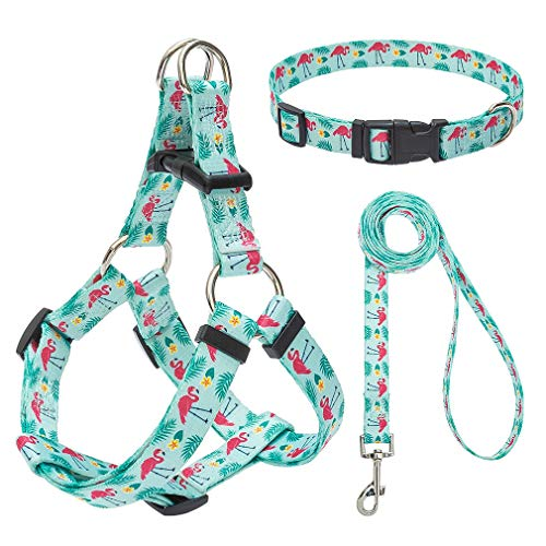 EXPAWLORER No Pull Dog Harness with Leash and Collar Set, Basic Halter Vest Harness, Adjustable Soft Strap with Fashion Banana Flamingo Design (Flamingo)