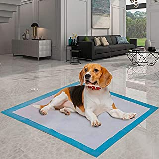 Dog Pee Pad Super Absorbent   Training Potty Pee Pads   Dimensions XXL 60 * 60 cm - 6 Layers of Protection   Pack of 40