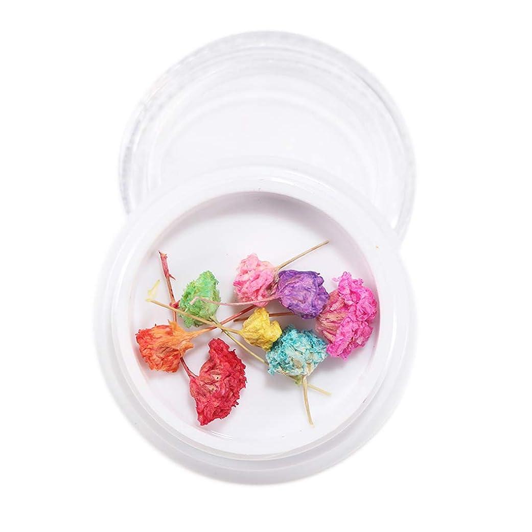 誰でも輸血のぞき穴Toygogo ネイルアート マニキュア ドライフラワー 押し花 ネイルデコレーション 全16種選択でき - 9