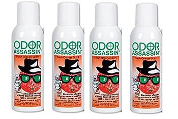 Best odor assassin Reviews