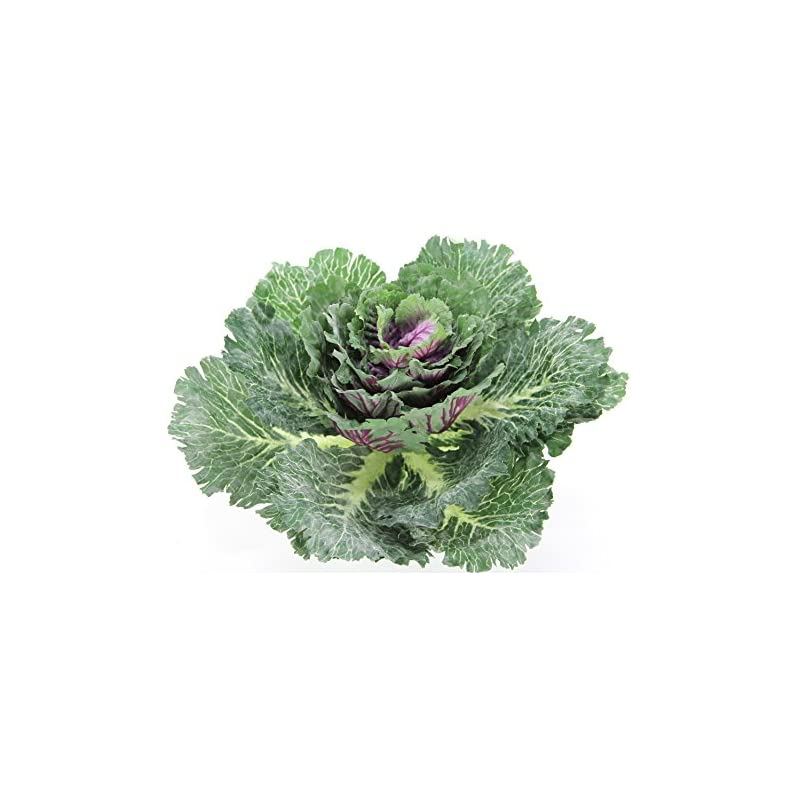 silk flower arrangements admired by nature gg8655-natural artificial cabbage home kitchen decoration, green