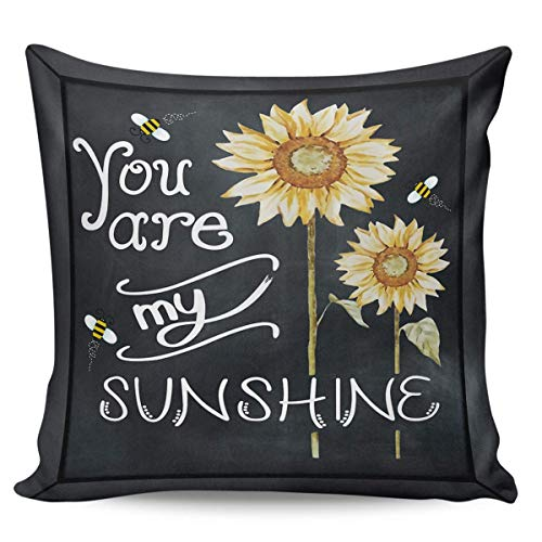 W-wishes Throw Pillow Covers Cases,You are My Sunshine Sunflower Bee,Blackboard Cushion For Home Decoration, 18 x 18 Inch