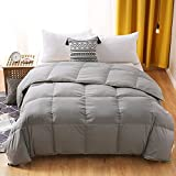 BPC Queen Size Down Comforter - Goose Duck Down and Feather Filling - 100% Soft Brushed Microfiber Fabric Duvet Cover - All Season Duvet Insert or Stand-Alone Down Comforter