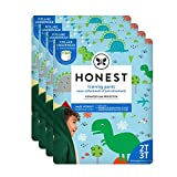 The Honest Company Toddler Training Pants, Dinosaurs, 2T/3T, 104 Count, Packaging May Vary
