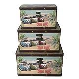 Nahuel Home Juego de 3 baúles Furgonetas Surf Medidas: Grande 28 x 20 x 16 cm Mediana 24 x 16 x 14 cm Pequeña 20 x 10 x 12 cm