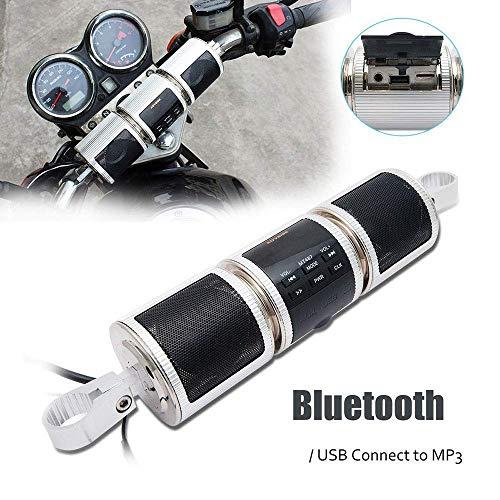 LIUJIE Powersport Speakers, wasserdicht 12V HiFi Motorcycle Bluetooth Lautsprecher mit Fm Radio Stereo Sound System für ATV Remote Alarm MP3 Player,Silber