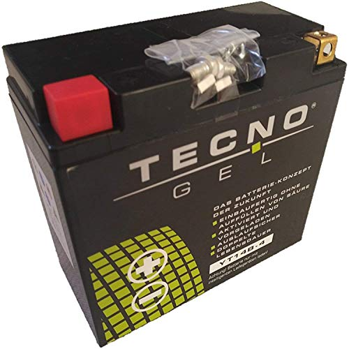 Preisvergleich Produktbild YT14B-BS GEL-Batterie für XVS 1100 A Drag Star Classic Baujahr 2000-2007 von TECNO