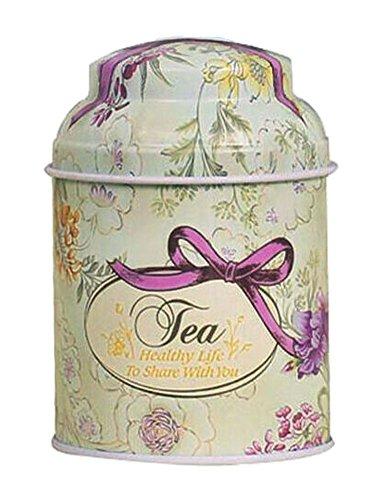 Alien Storehouse Satz von 2 Praktischen Vorratsbehälter Tee/Kaffee/Zucker Kanister, Blumenmuster