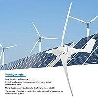 風車発電機、ノイズのない風力発電機、ハイブリッドソーラー風力システムのフランジ接続ホーム12Vまたは24Vバッテリー(24V)