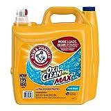 Arm & Hammer Laundry Detergent (250 Fl OZ, None)