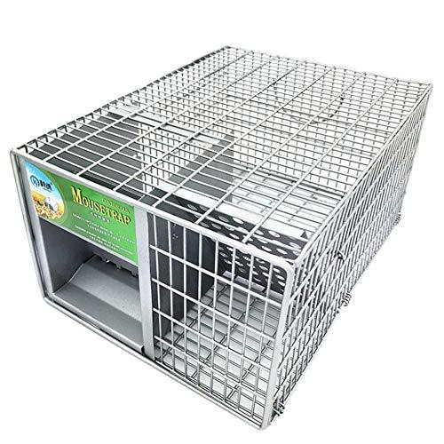 Aiya Jaula Animal de la Trampa fácil Fijar la Trampa humanitaria para los Gatos de los Conejos y la Fauna de tamaño Similar clasificada Conveniente para la Trampa Animal de Interior y al Aire Libre