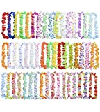 King Luau 50 Pack Necklace Leis - Hawaiian Lei Bulk Party Favors for Tropical Hawaii Themed Birthday, Wedding, Graduation or Costume | Tiki Flower Theme Supplies and Decorations for Kids and Adults