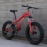 LFSTY Bicicleta Fat Tire Bike, Bicicletas de montaña para Adultos y Adolescentes con Frenos de Disco y Horquilla de suspensión de Resorte, Marco de Acero de Alto Carbono,D,20inch 24 Speed