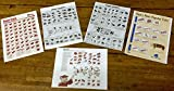 Notebook Size Meat Charts - 3 Beef Cutting Charts and 2 Pork Cutting Charts