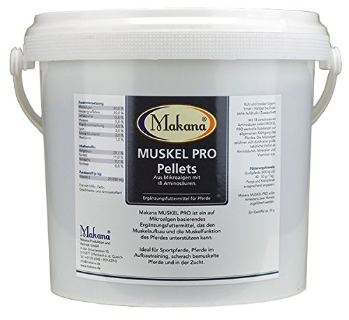 Makana Muskel Pro mit Mikroalgen, 5 kg Eimer, 1er Pack (1 x 5 kg) …